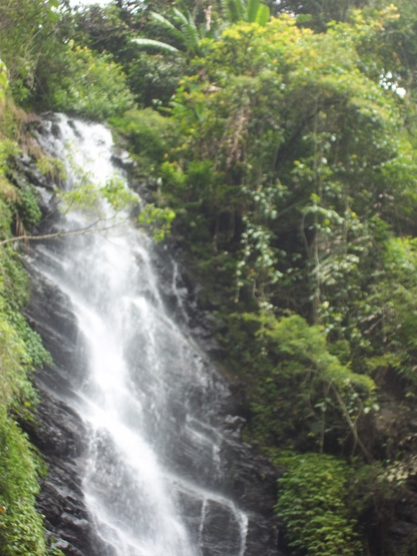 Air Terjun Ndlundung. Air terjun ini berada di ketinggian ±760 meter dari permukaan laut di hutan lindung yang dikelola oleh Perhutani Mojokerto
