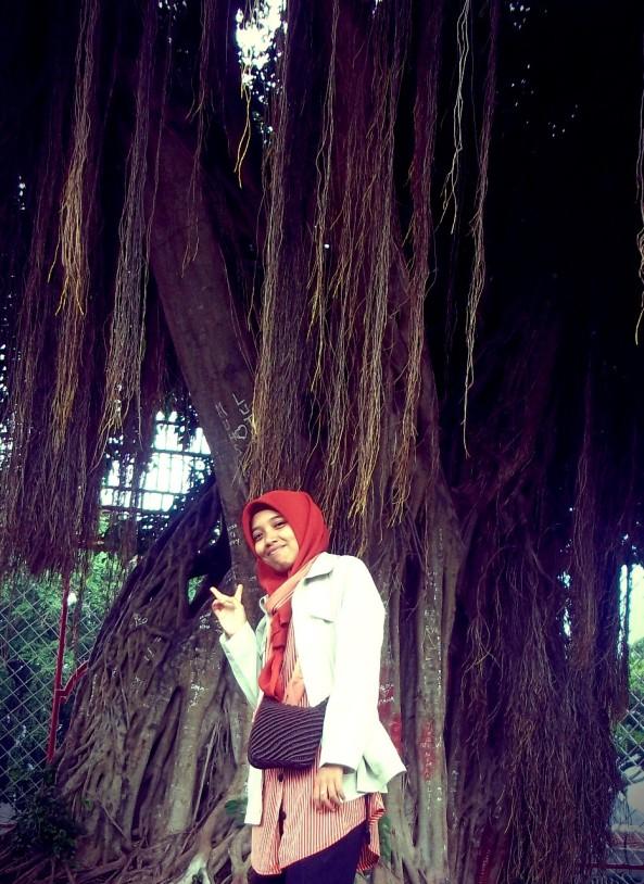 Pose di depan pohon Ficus benjamina :D