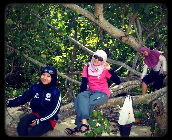 Nangkirng Di Pohon Pinggirian Pulau Sempu